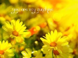 spring-sunshine-1